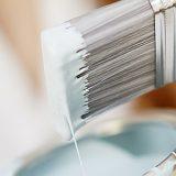 Platinum pensel med maling